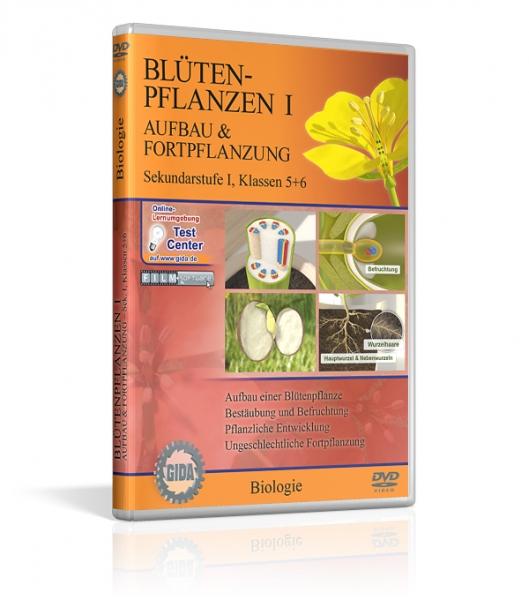 Blütenpflanzen I - Aufbau und Fortpflanzung