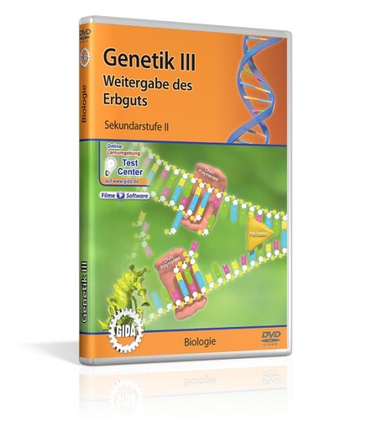 Genetik III - Weitergabe des Erbguts