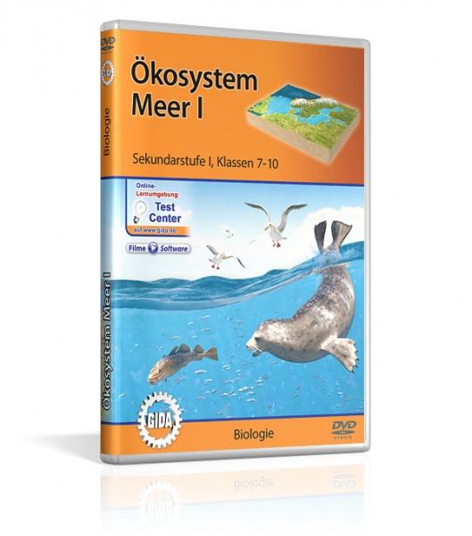 Ökosystem Meer I