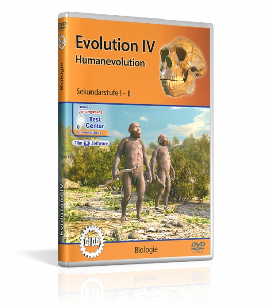 Evolution IV - Humanevolution