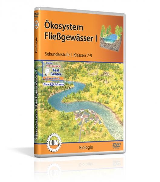 Ökosystem Fließgewässer I
