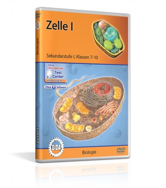 Zelle I