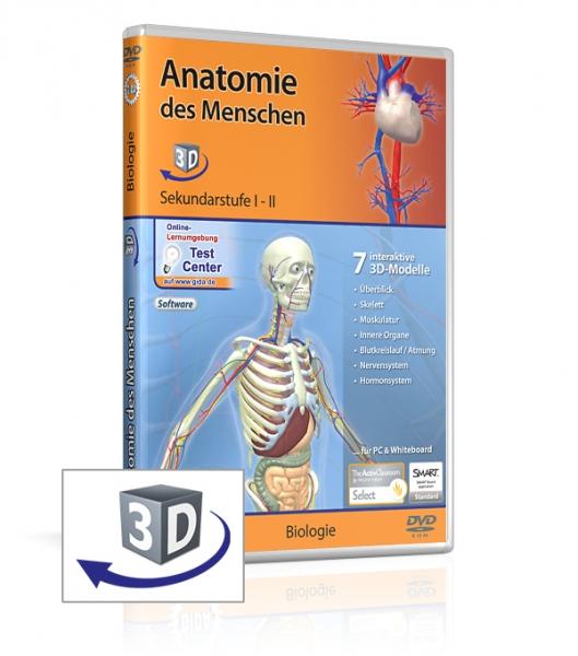 Anatomie des Menschen