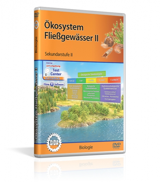 Ökosystem Fließgewässer II
