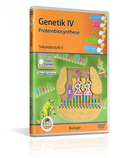 Genetik IV - Proteinbiosynthese