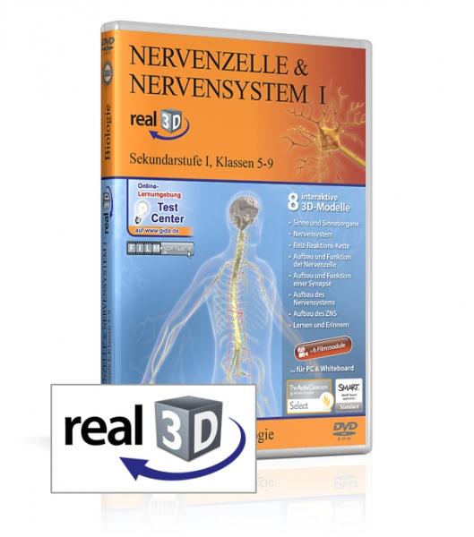 Nervenzelle & Nervensystem I