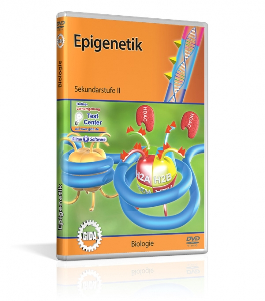Genetik - Epigenetik