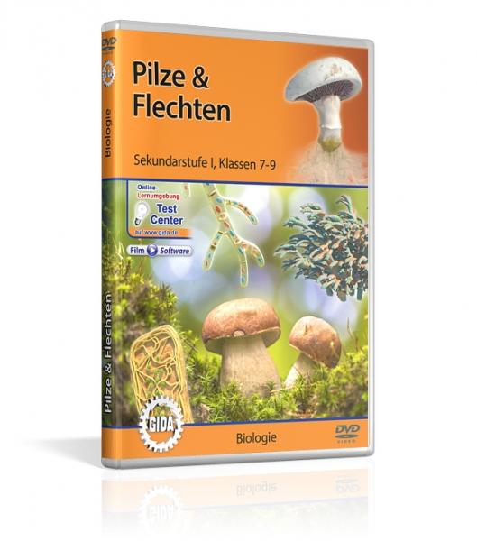 Pilze & Flechten