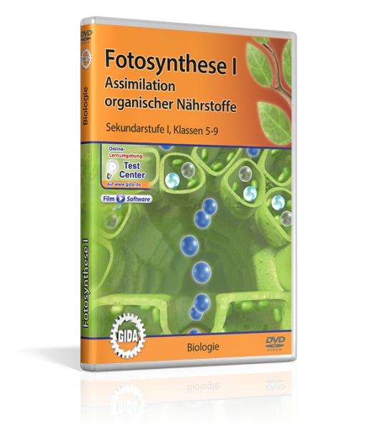 Fotosynthese I | Filme | Biologie | Fachbereiche | GIDA