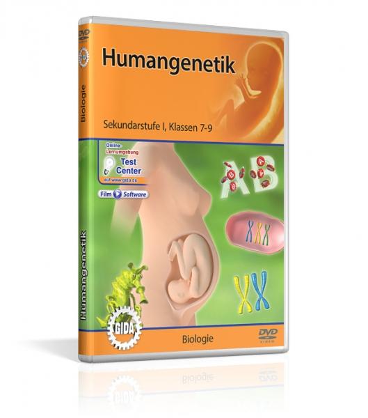 Genetik - Humangenetik