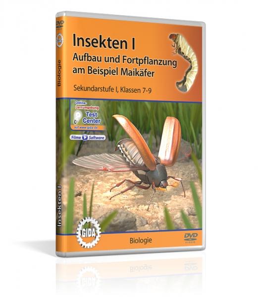 Insekten I - Aufbau und Fortpflanzung am Beispiel Maikäfer