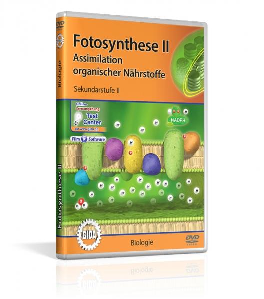 Fotosynthese II   Filme   Biologie   Fachbereiche   GIDA