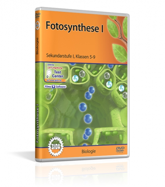 Fotosynthese I