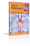 Herz und Blutkreislauf - Schulfilm (DVD)