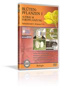 Blütenpflanzen I - Aufbau und Fortpflanzung - Schulfilm (DVD)