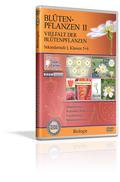 Blütenpflanzen II - Vielfalt der Blütenpflanzen - Schulfilm (DVD)