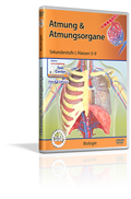 Atmung & Atmungsorgane - Schulfilm (DVD)