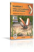 Insekten I - Aufbau und Fortpflanzung - Schulfilm (DVD)