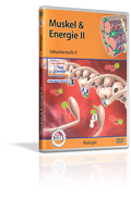 Muskel & Energie II - Schulfilm (DVD)