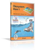 Ökosystem Meer I - Schulfilm (DVD)