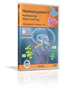Hormonsystem II - Hormone bei Mann und Frau - Schulfilm (DVD)