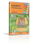 Genetik IV - Proteinbiosynthese - Schulfilm (DVD)