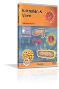 Bakterien & Viren - Schulfilm (DVD)