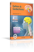 Gehirn & Gedächtnis - Schulfilm (DVD)